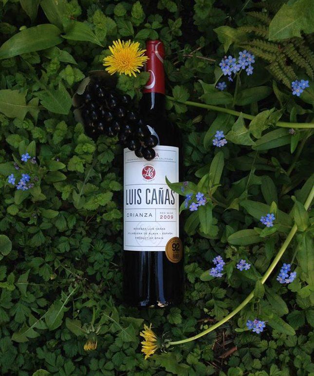 Wein Dekorationsbild